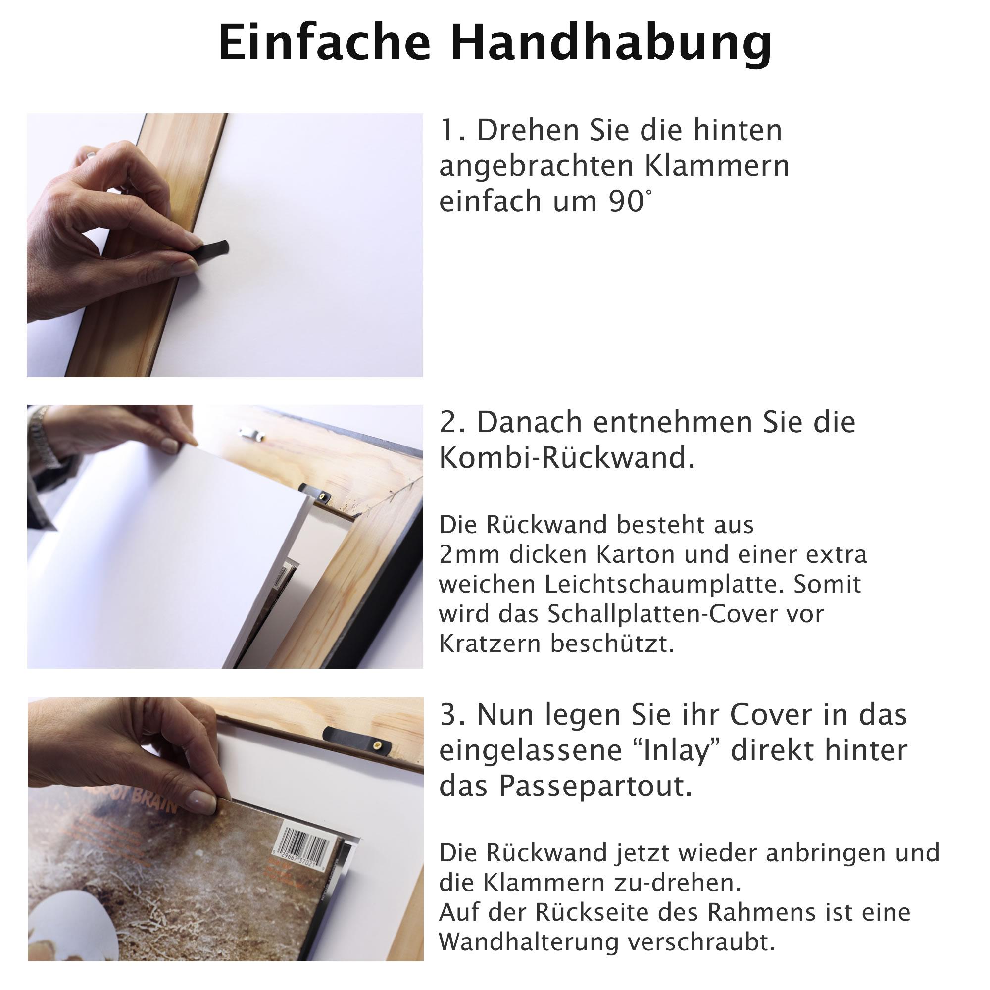 Vinyl LP Cover Michael Echtholz Rahmen mit Passepartout und Echtglas ...