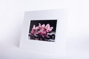 Fotodruck Sorglos-Paket